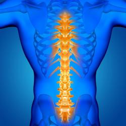 Как се възстановява хрущялната тъкан на гръбначния стълб?