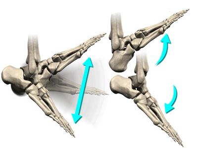 От слабостта, нивото на изменения, възпалителните огнища, развитието на болки зависи общото нарушение на функциите на ставното съединение.