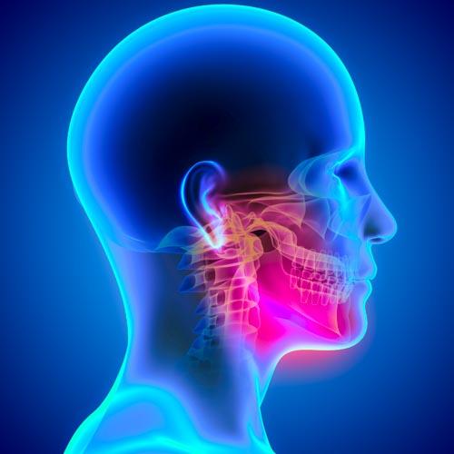 Темпоромандибуларната става е чифт ставно съчление на черепа на човека, което съединява черепа с долната челюст.