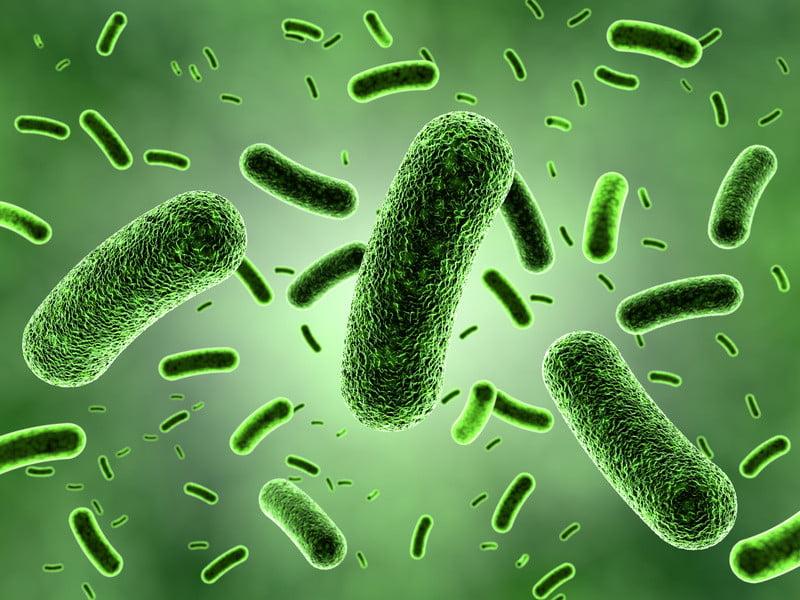Причинител на инфекции на ставите и костите може да са стрептококи, стафилококи, херпес, гъбички, сифилис и различни вируси